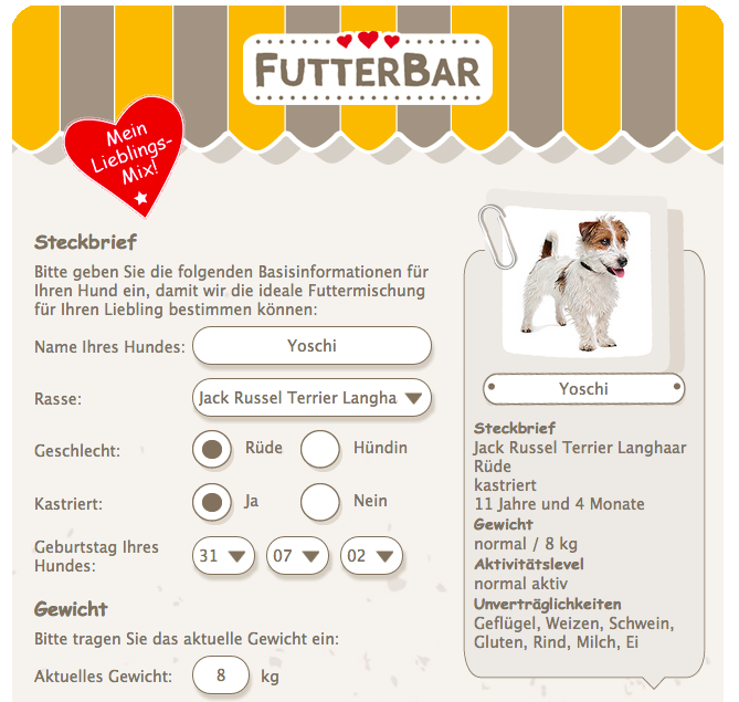 Jack russel dackel mix steckbrief
